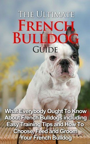 The Ultimate French Bulldog Guide What Everybody Ought To Know