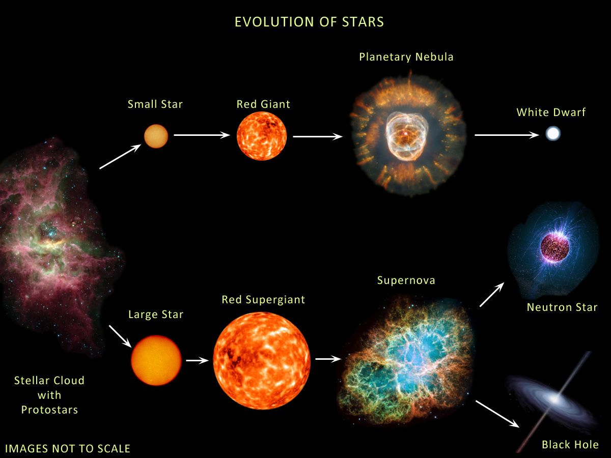 Free Worksheet Life Cycle Of A Star Worksheet stellar evolution worksheet delibertad sharebrowse