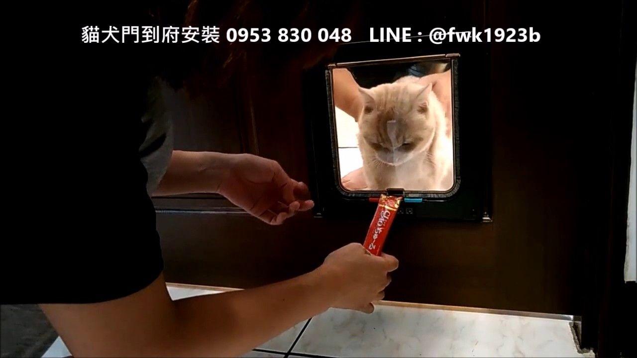 Video Cat / Dog Door 寵物門 到府安裝服務~三重力行路安裝貓門