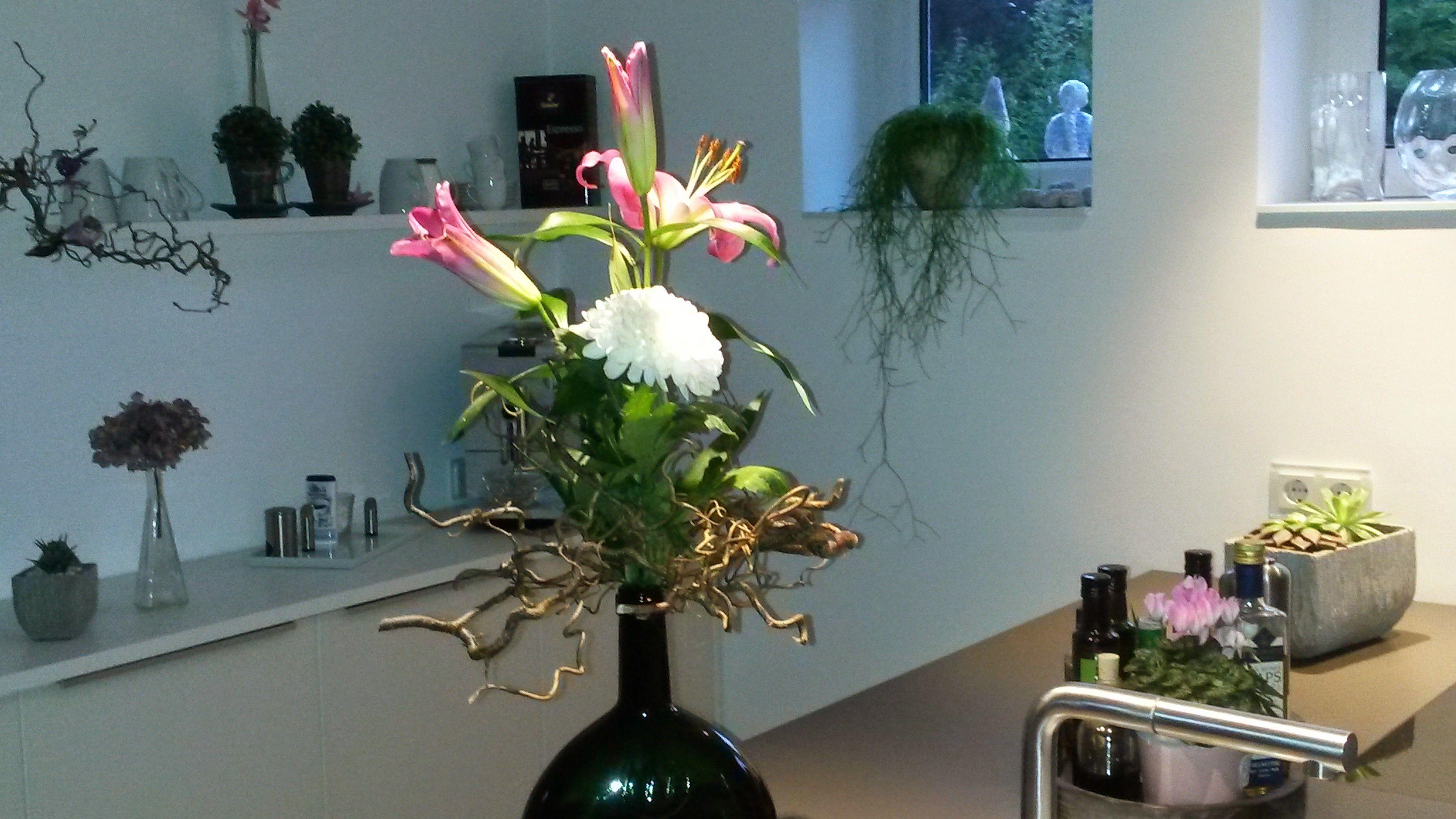 Blumen/Pflanzen .. ein muß