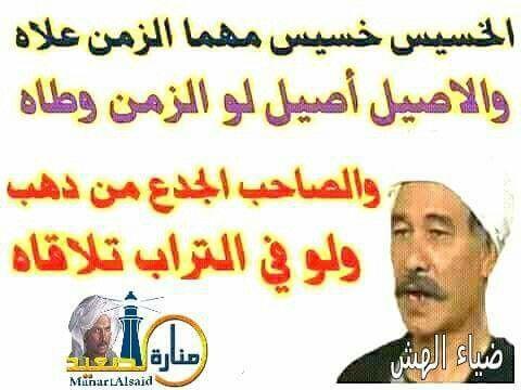 Pin By سلطان محمود On الى اجمال حبيه في الكون Pll