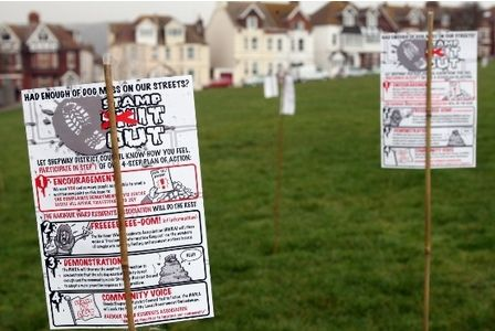 Forest Of Bamboo Poles Highlights Dog Mess Blight In Folkestone With Images Dog Mess
