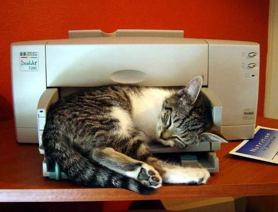 3D Printer :P