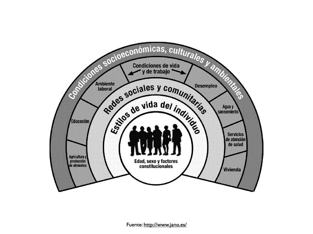 Dahlgren Göran Margaret Whitehead Policies And Strategies To Promote Social Equity In Health Ambiente Laboral Salud Educacion