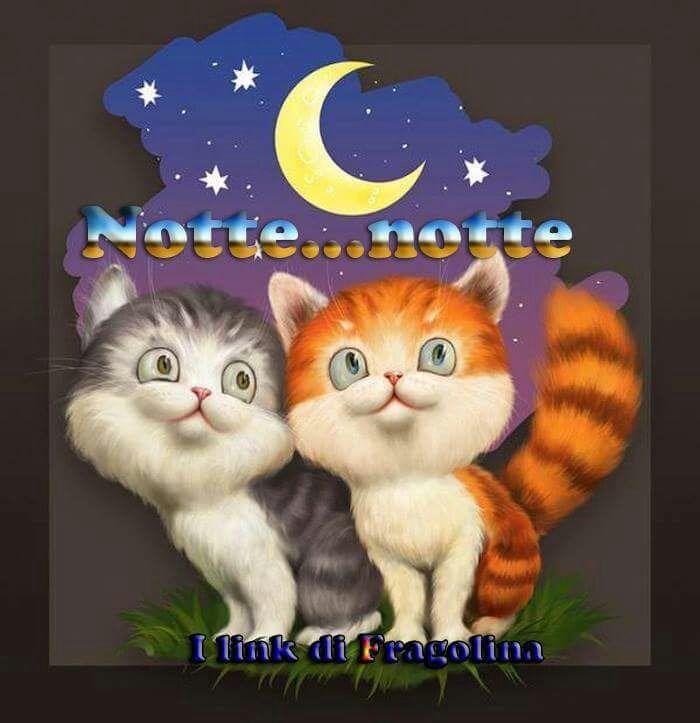 Buonanotte gatti buonanotte pinterest buonanotte for Buongiorno con gattini
