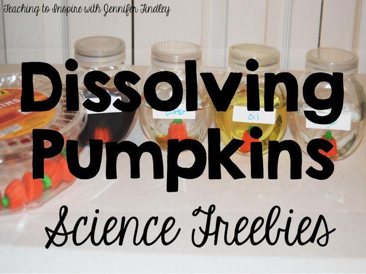 A fun fall or Halloween science experiment; dissolving pumpkins