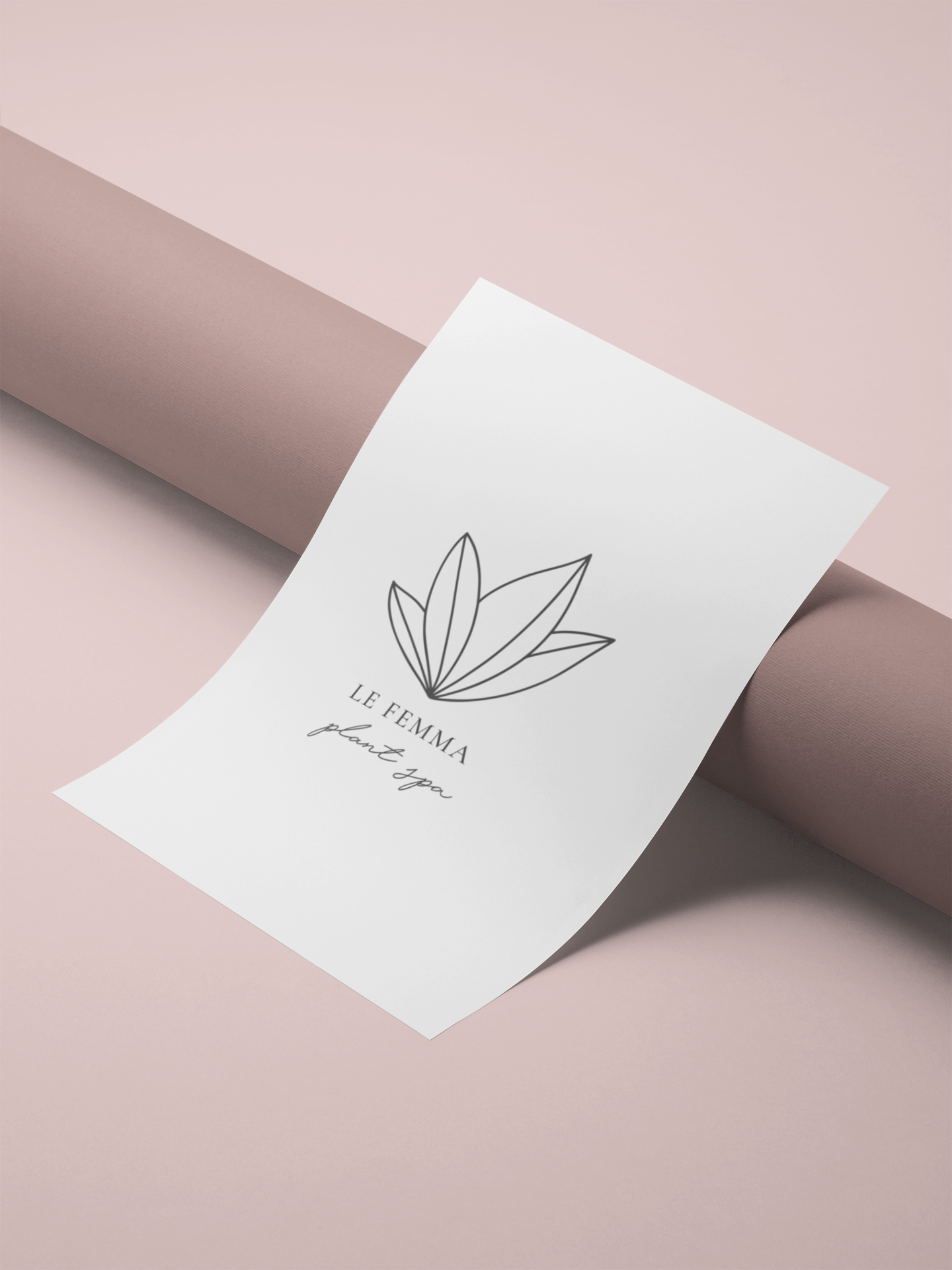Natural Minimalista is a set of 15 naturalinspired and