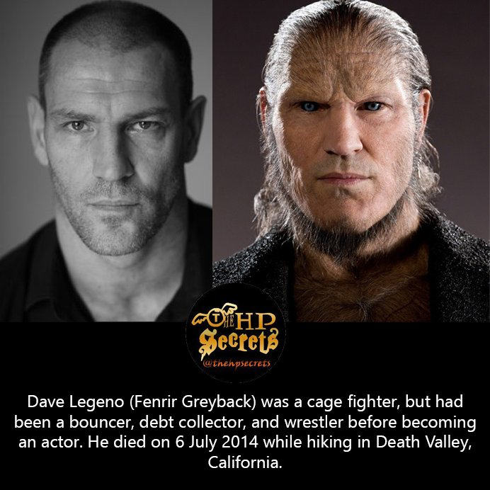 Pin By Reghan Flores On Harry Potter Dave Legeno Actors Harry Potter