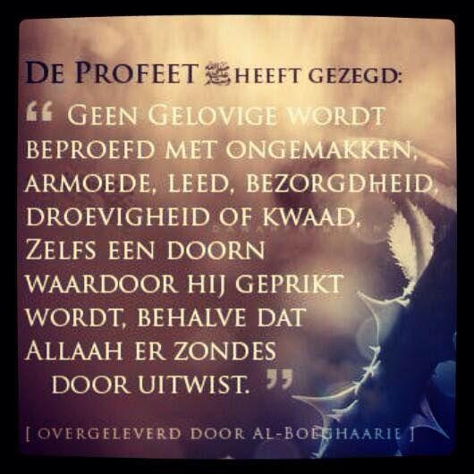 Citaten Uit De Engelenmaker : Citaten en wijze woorden uit de islam nederlandse quotes
