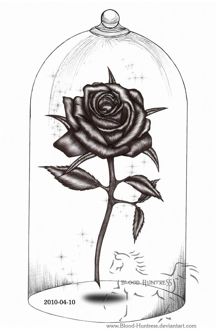 Beauty And The Beast Tattooz Pinterest Drawings Pencil