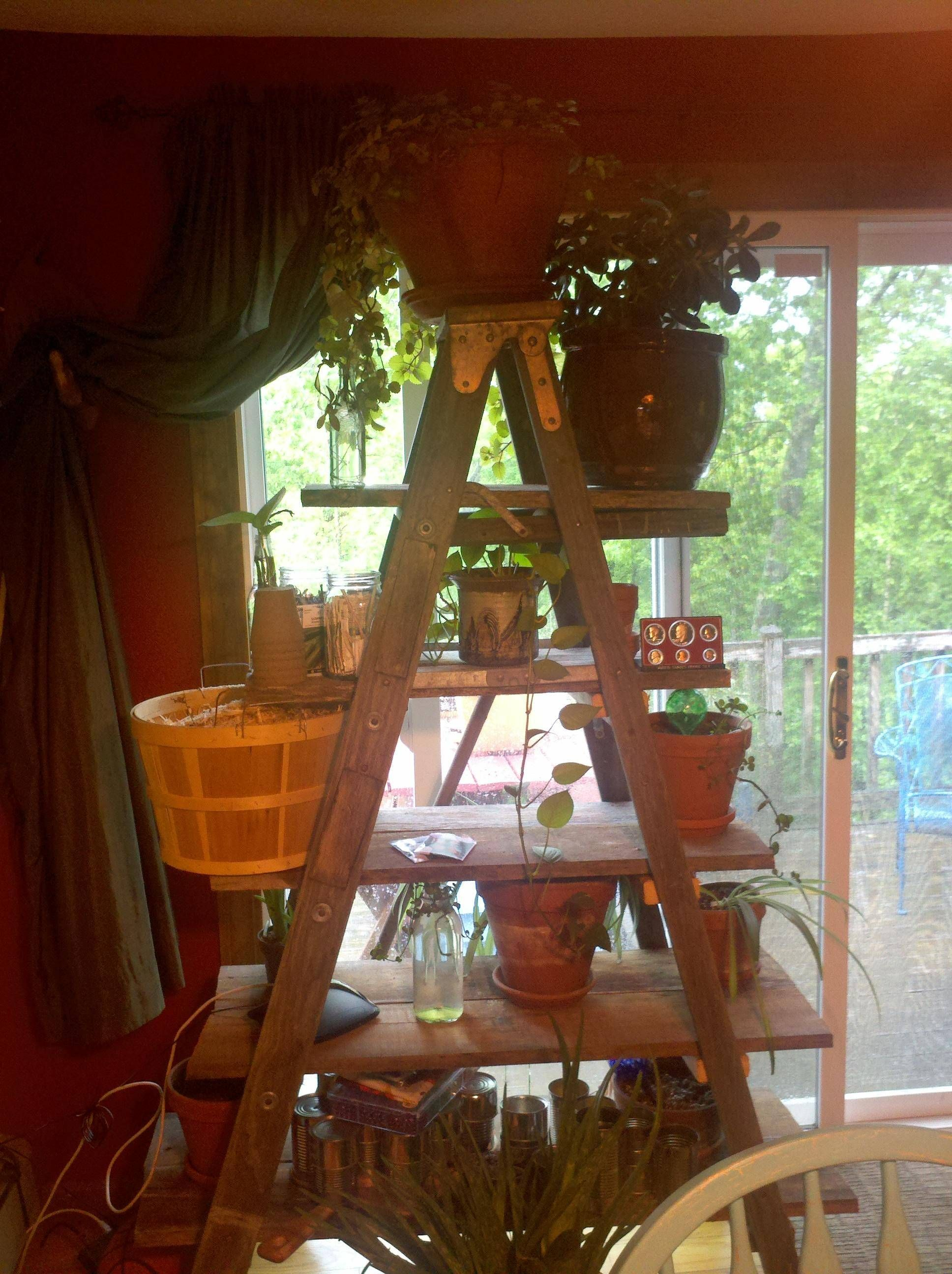 Our version of the ladder shelves! Thanks to my husband <3