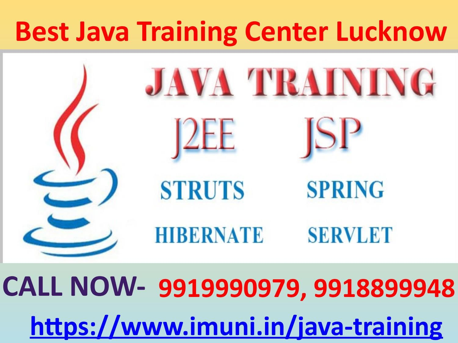 At IMuni IT Solutions, we have highly qualified and