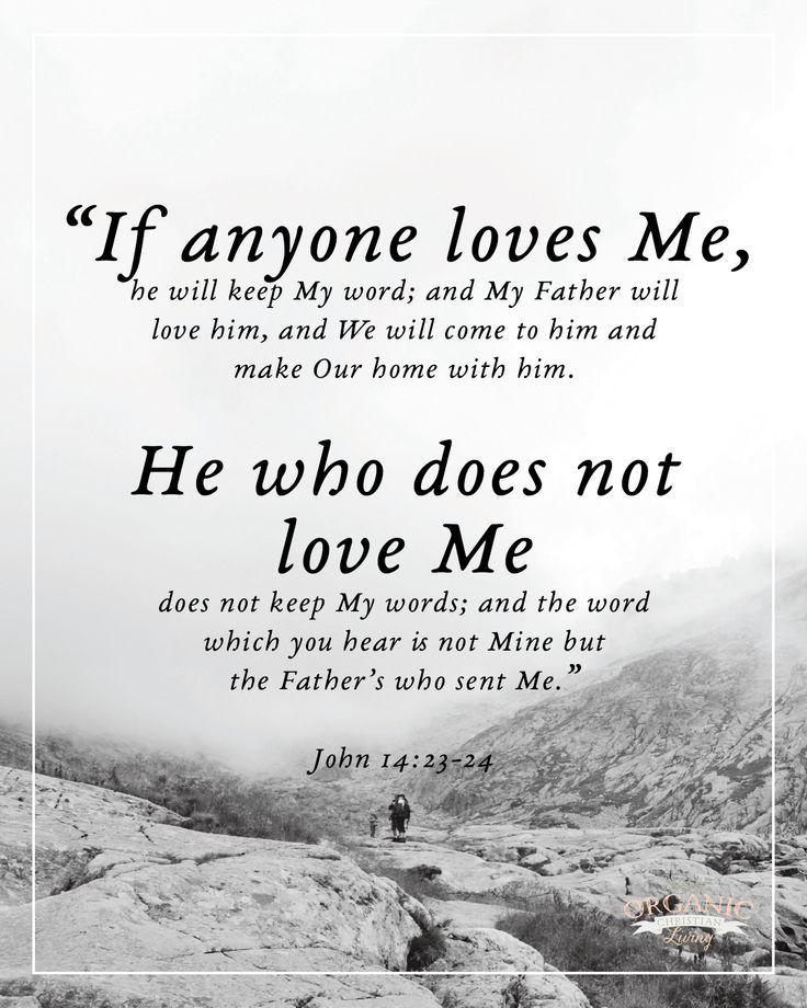Bible Verses Scripture Quotes Bible Quotes Christian Quotes Adorable Quotes From The Bible About Love