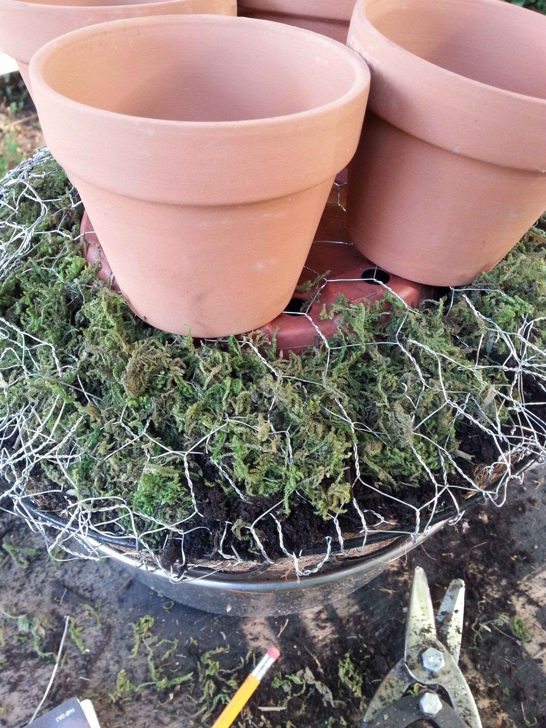 How to make a topiary from shell with your own hands 52