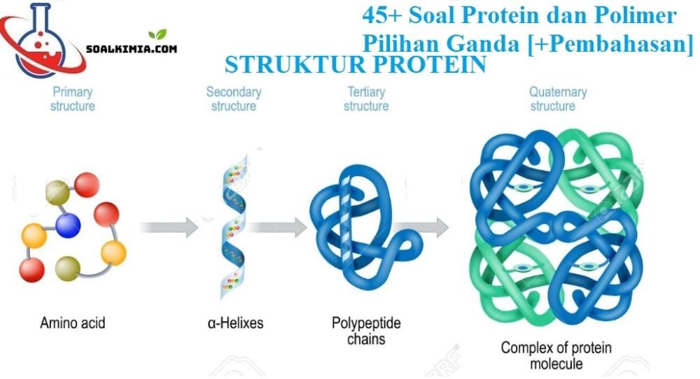 45 Contoh Soal Protein Dan Polimer Pilihan Ganda Pembahasan Kali Ini Tim Kimia Space Akan Berbagi Soal Tentang Protein Beserta Jawabannya Kimia Protein