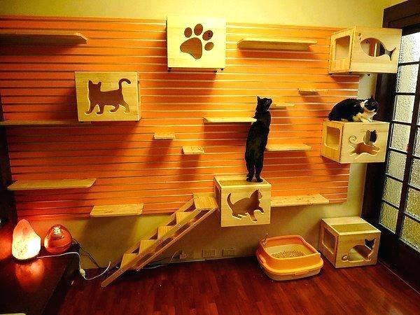 Cat Room Ideas Creative Decor For Cats Home Design Garden Architecture Blog Com Cat Room Decor Cat Friendly Room Ideas Cat Room Decor Creative Decor Cat Room