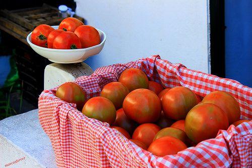 Portu Zaharrean tomateak