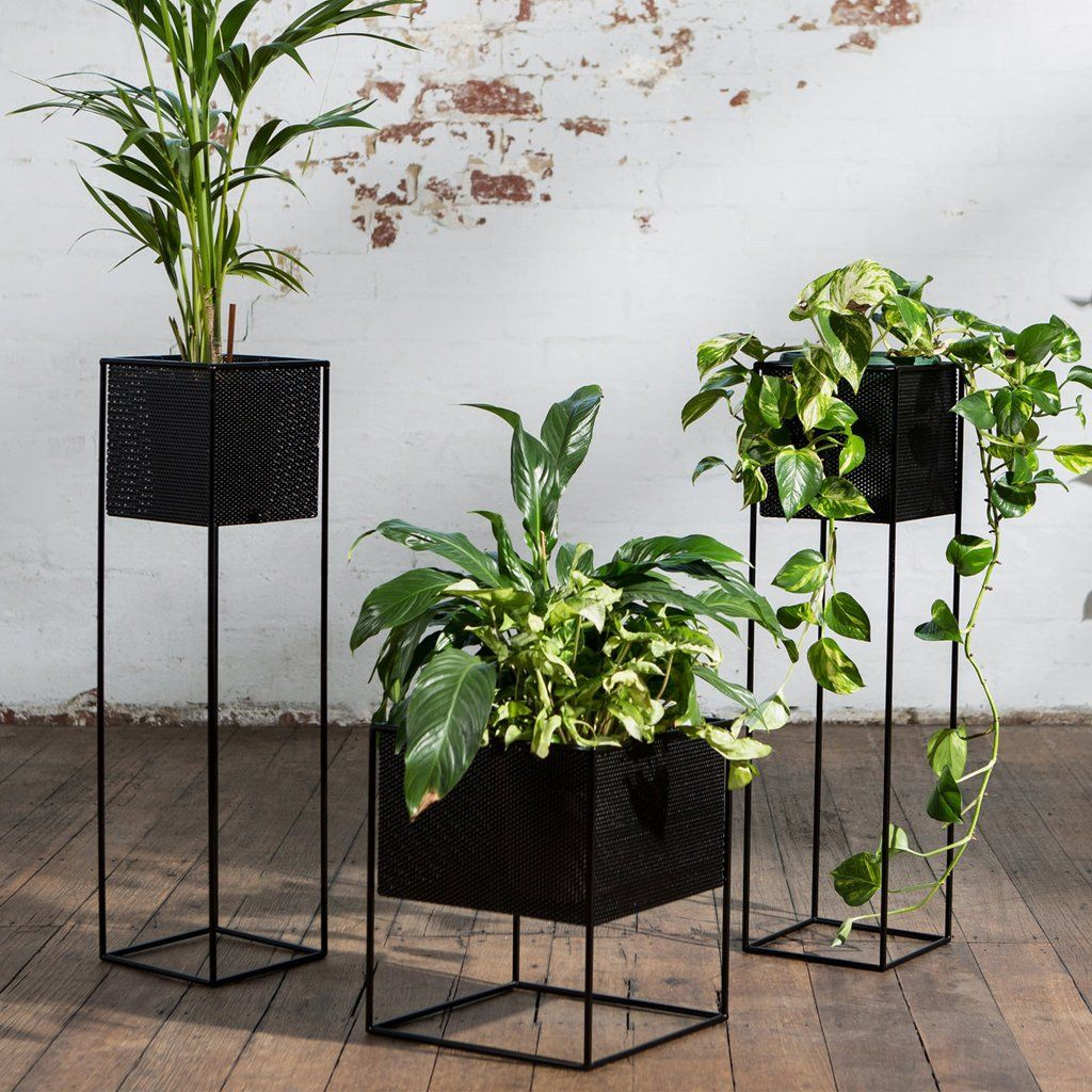 Perforated Planter Box Tall Black Plant Decor Planters Plant Stand Indoor