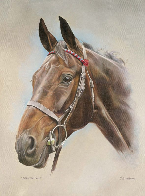 SPRINTER SACRE Limited Edition Horse Racing Print by Equestrian Artist Joanna Stribbling