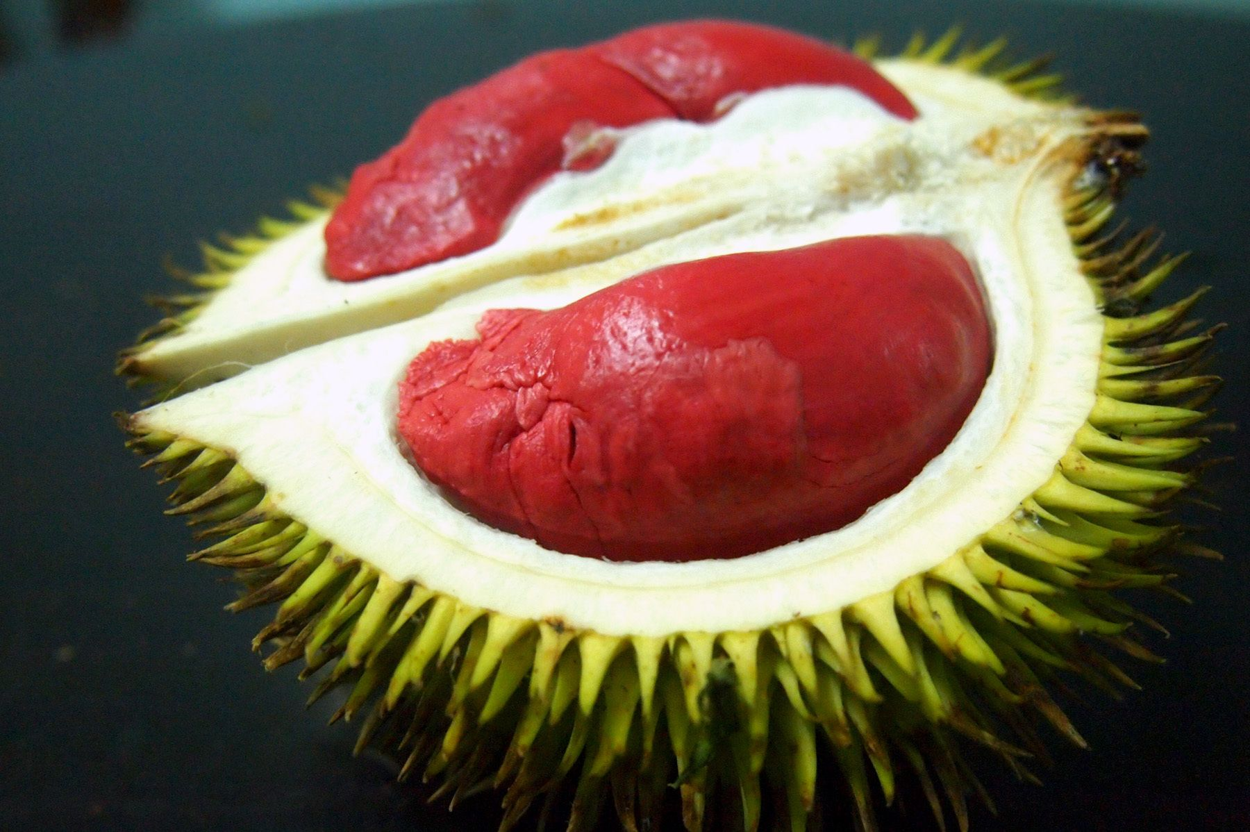 On the Trail of Durian, Southeast Asia's 'Crème Brûlée on a Tree ... ww2.kqed.org1800 × 1198Sök med bild The inside of the Graveolens, a variety of durian that grows in the southernmost parts