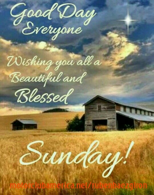 Have A Nice Sunday Everyone Archidev