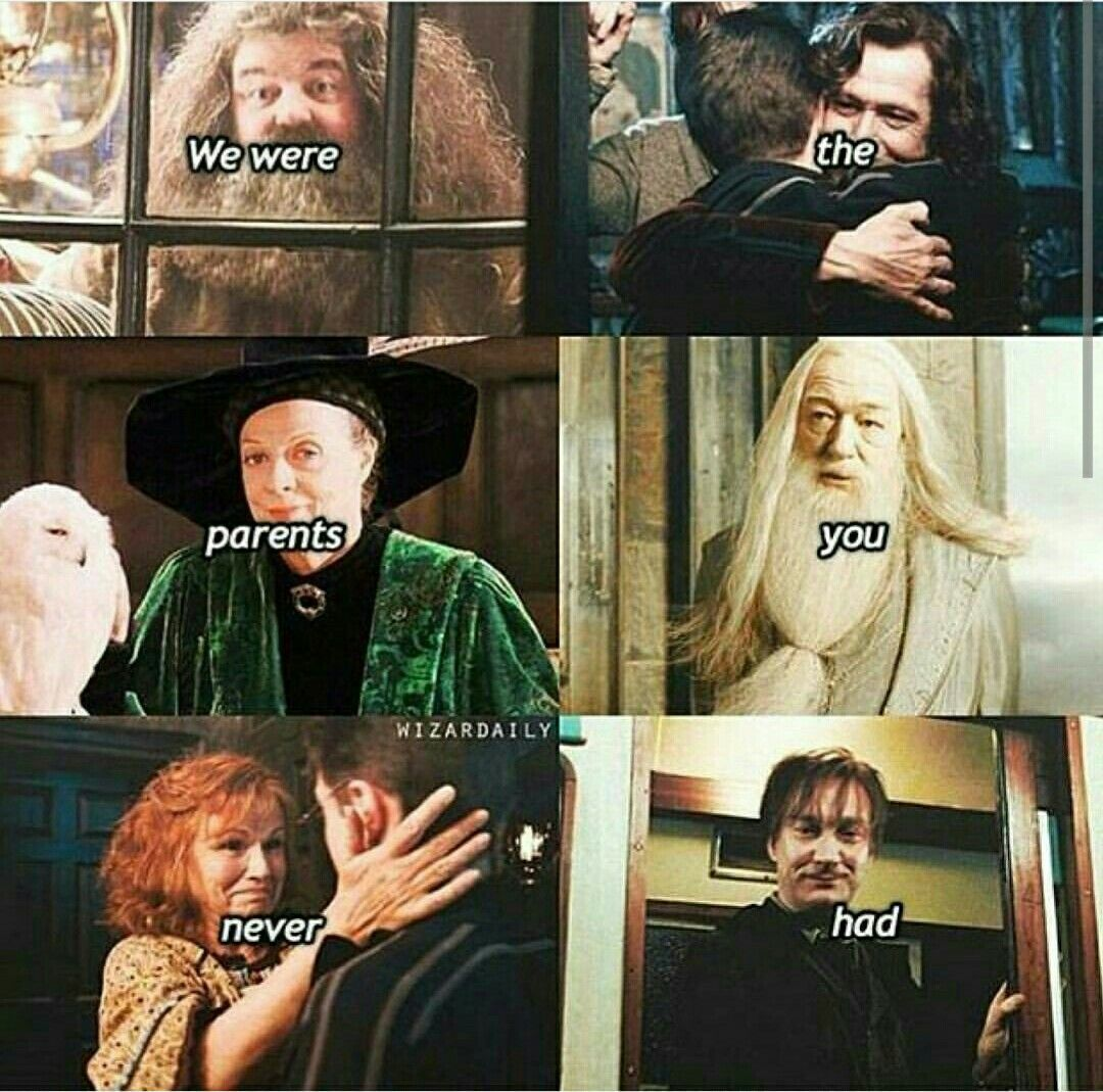Pin On Harry Potter Funny And Sad