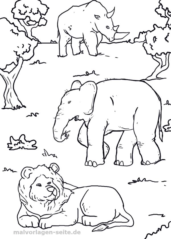 Malvorlage Tiere Afrika Malvorlagen Tiere Ausmalbilder Tiere Malvorlagen