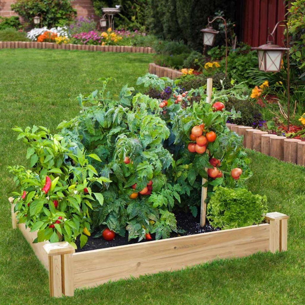 26 Inspiring Vegetable Garden Design Ideas For Your Home ...