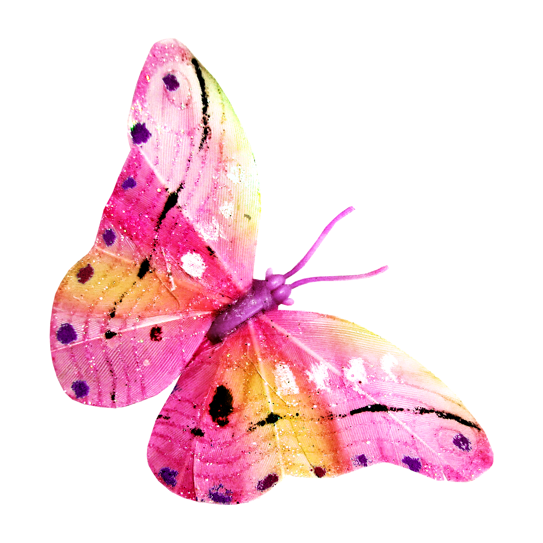 Pin på Clipart transparent Butterfly