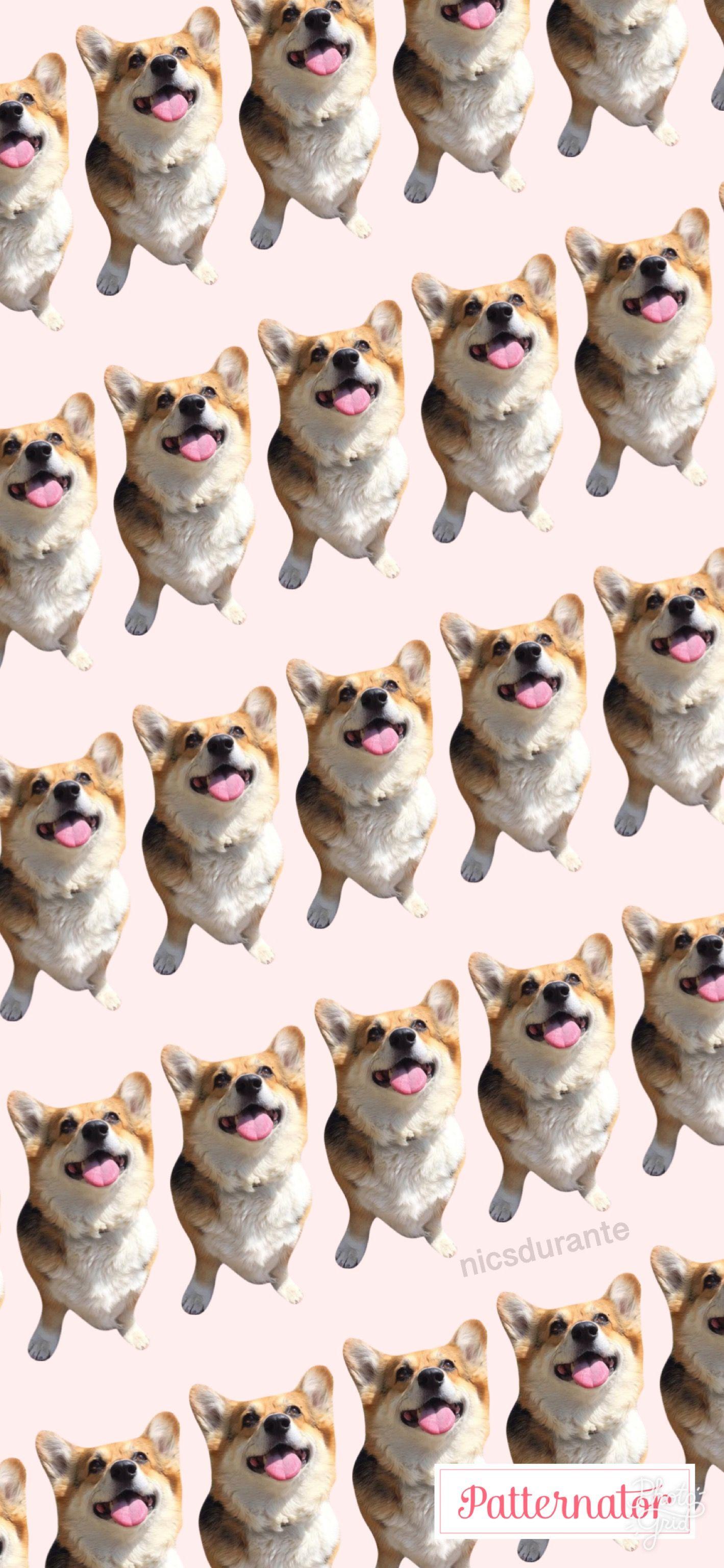 Dog Wallpaper PatternWallpaper Animals