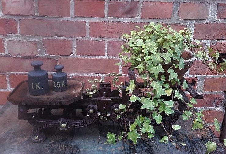 Antike Balkenwaage Mit 2 Gewichten Jugendstil Gusseisen Rost Patina Vintage Brocante Shabby Garten Deko In 2020 Old Things Grapes Vintage