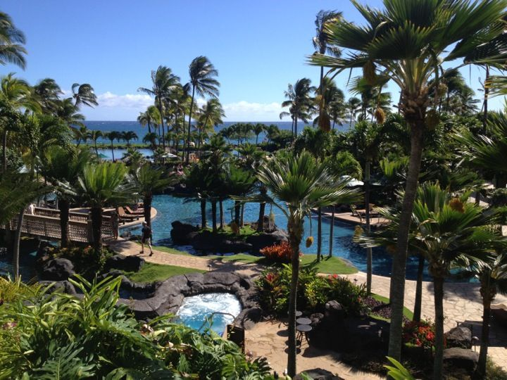 """The grounds are what make this place amazing!  If you're looking to relax by the pool all day long on your vacation, this is the place to be!  So many different pools! Shipwreck beach is in the """"backyard"""" of this hotel. amazing"""