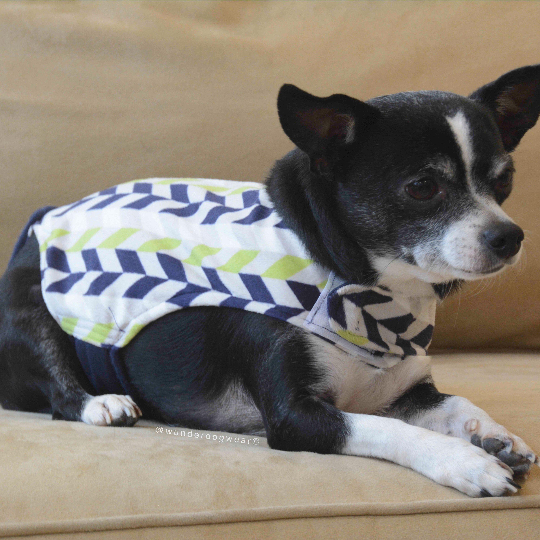 Custom Dog Clothes That Prevent Indoor Accidents Dog Diaper