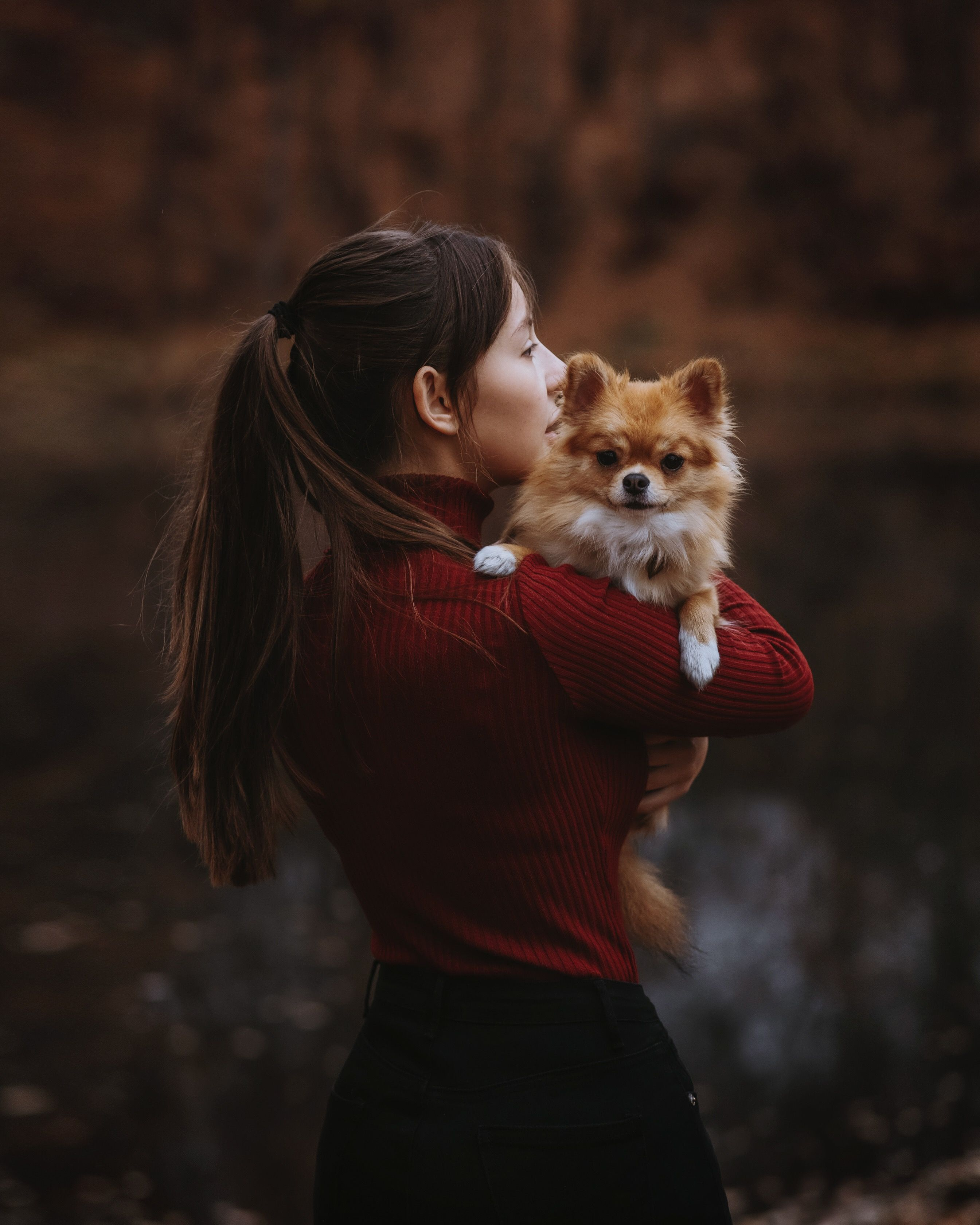 Картинки с собакой идеи