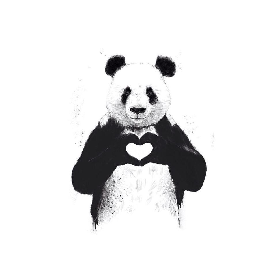 Panda Love wallpaper