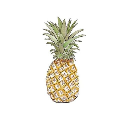 Good objects - Pineapple love! #pineapple #summer #beach #goodobjects