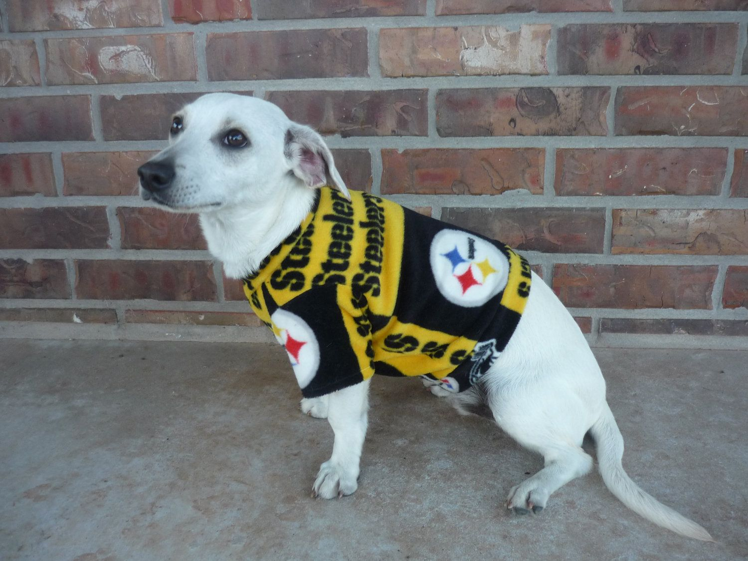 Pittsburgh Steelers Dog Coat for Small Dogs.  13.00 9170620ce