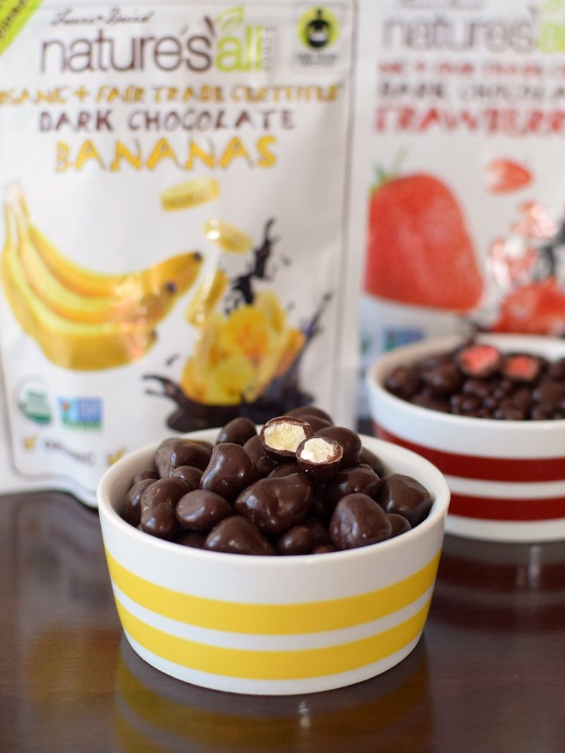 Nature's All Dark Chocolate Covered Fruit (freeze-dried