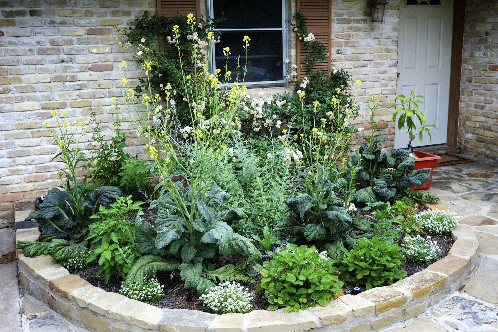 Edible Garden Landscaping Ideas 20 Wonderful Edible Garden Ideas