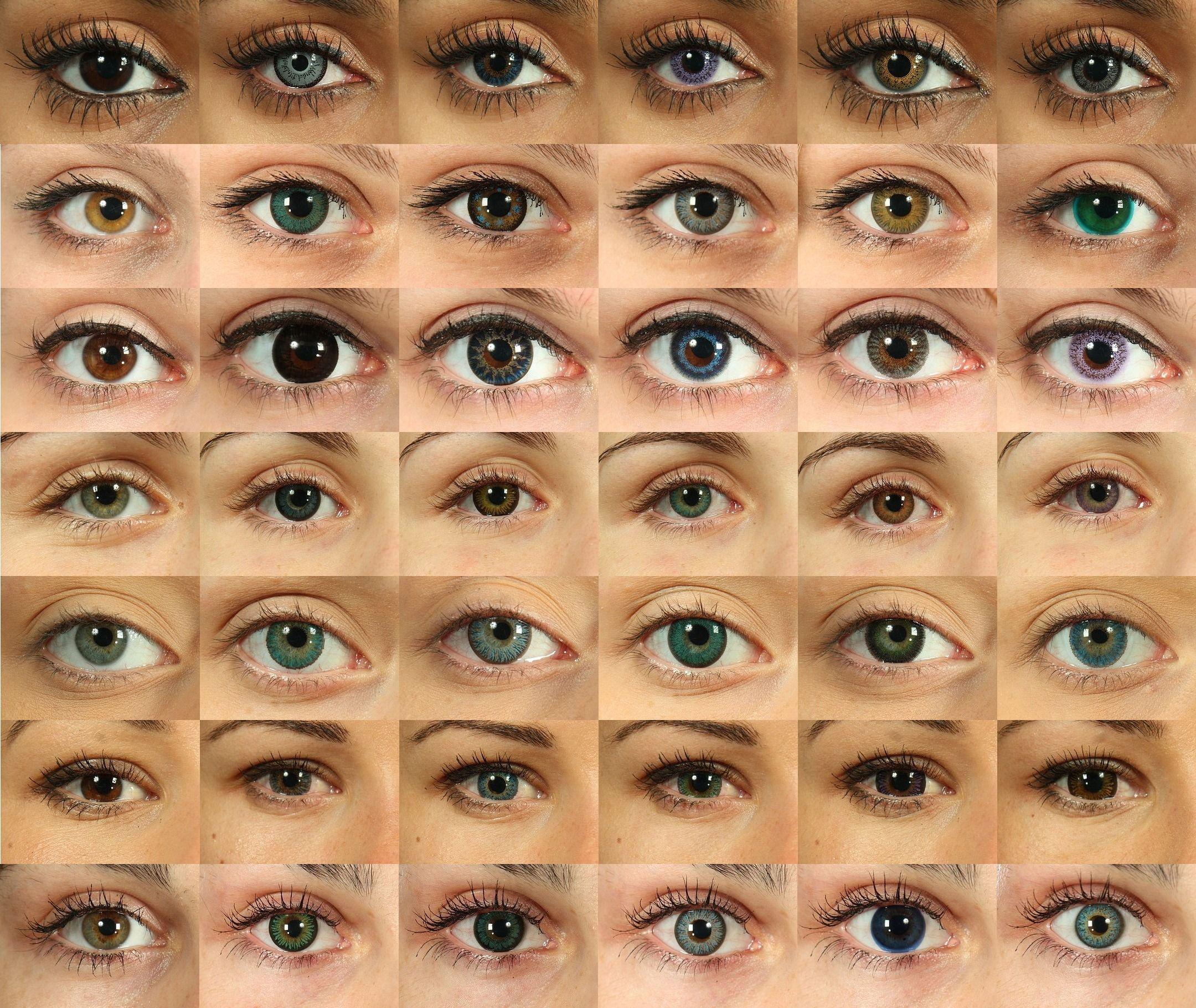 Eyes | week-end, shooting effectively hundreds of close-up photos of eyes ...