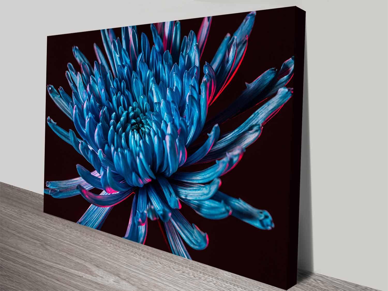 Blue spider mum cheap stretched art on canvas artist