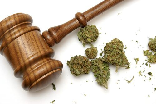 In January of 2009, Massachusetts made the move to decriminalize the possession of less than one ounce of marijuana for personal use. It's important to understand these new laws and how they may affect you, especially if you are caught with marijuana and are under the age of 18. Here's what you need to know.