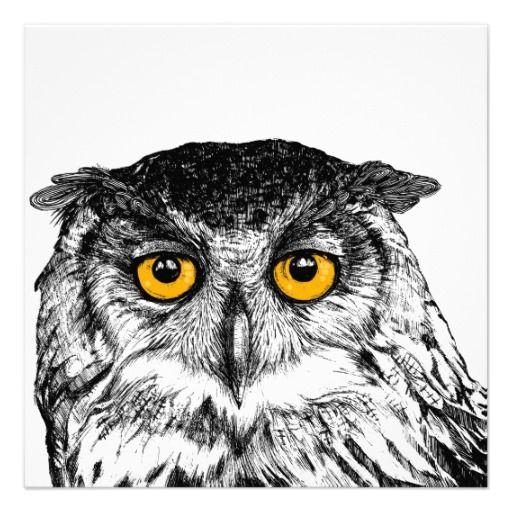owl - postcard