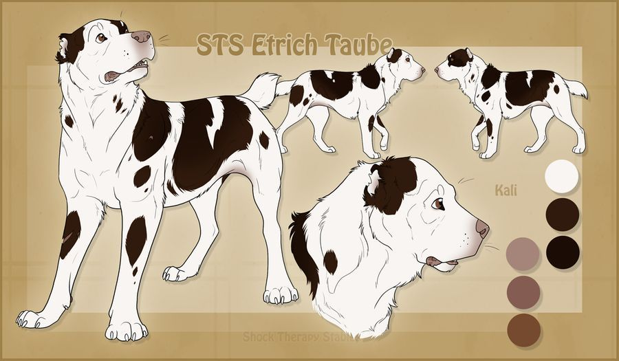Sts Dog Kali By Shocktherapystables On Deviantart In 2020 Anime