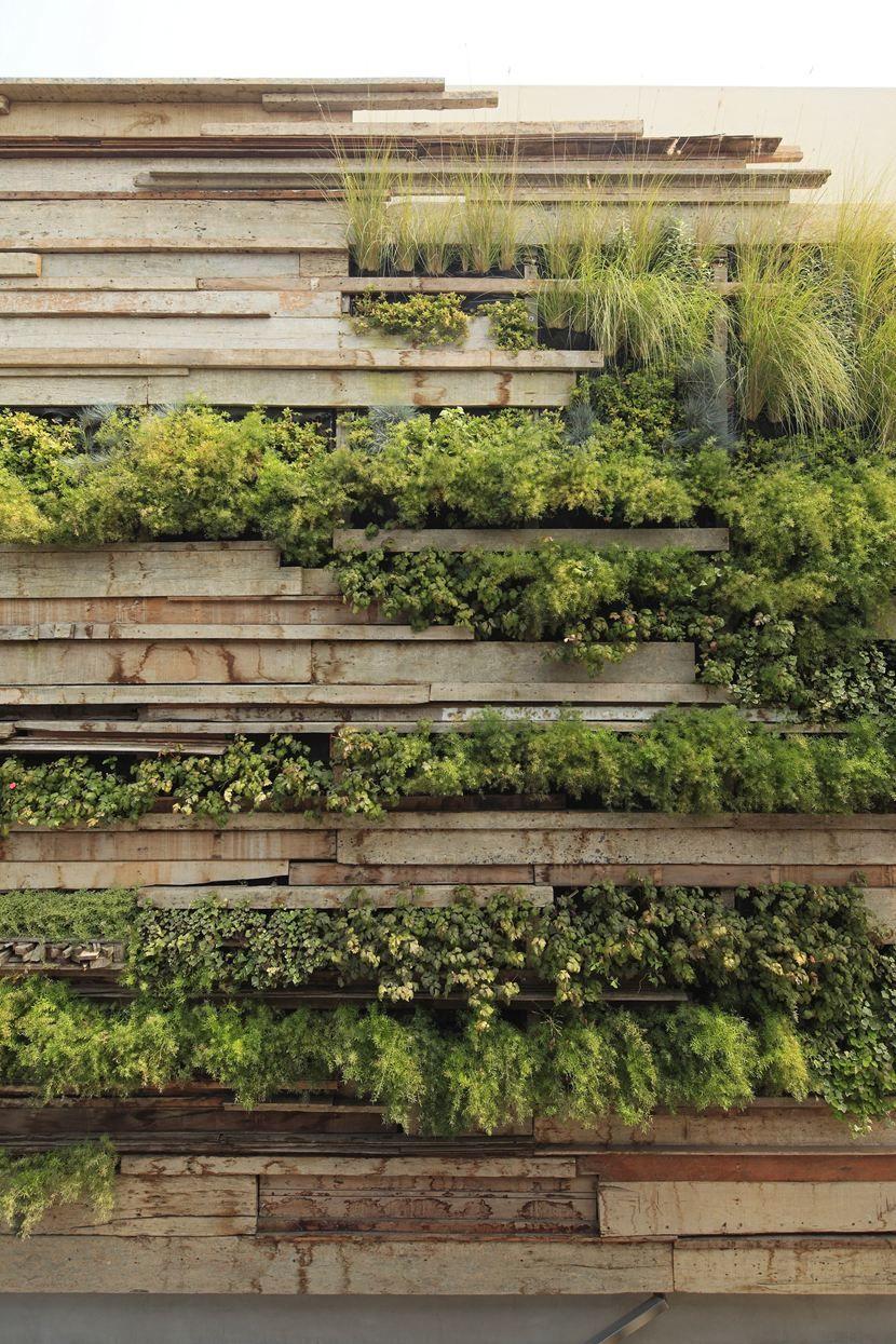 begrünte Trennwand Garten Garteninspiration