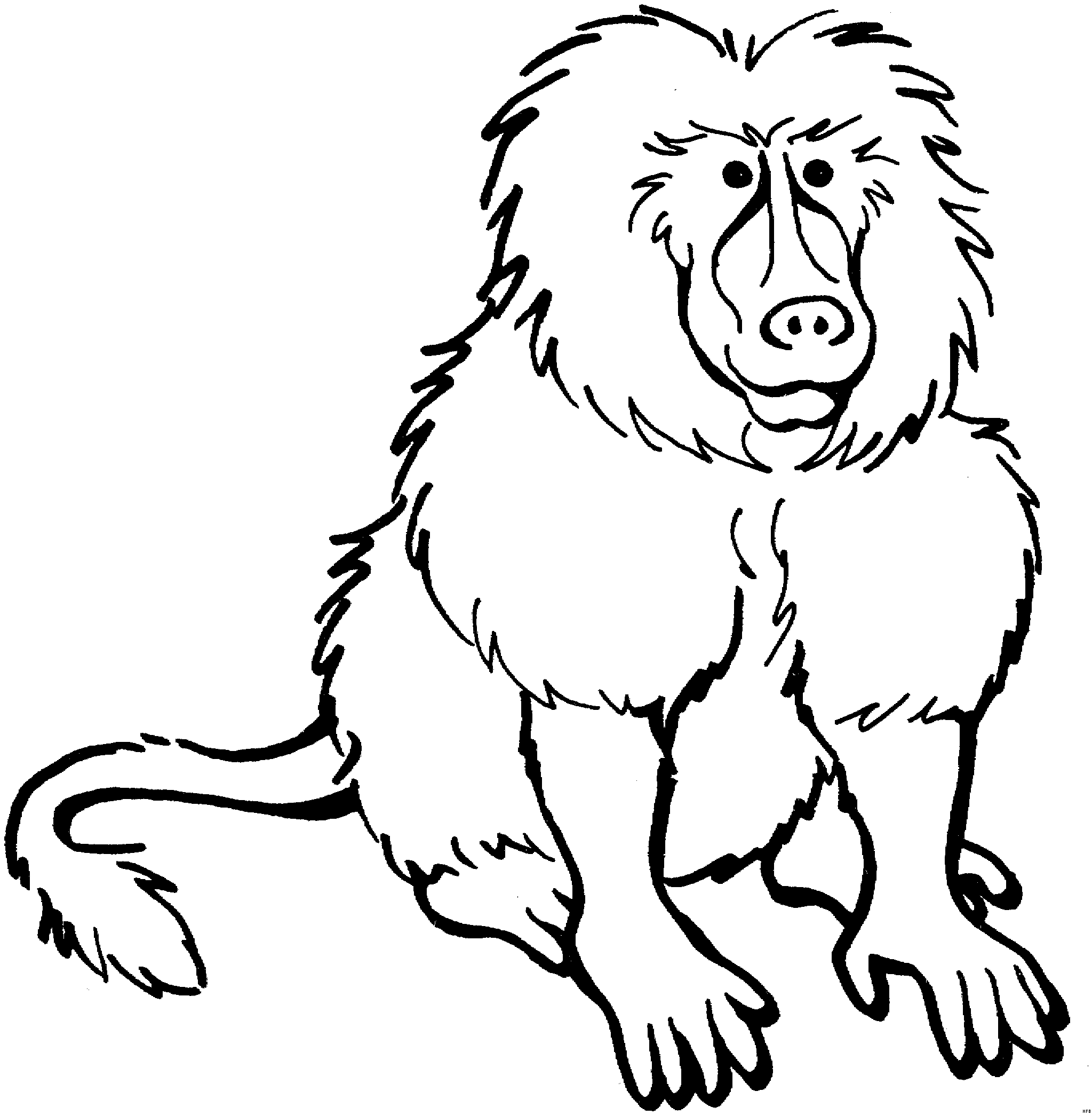 Baboon 1 Animals Coloring Pages For Animals Print And