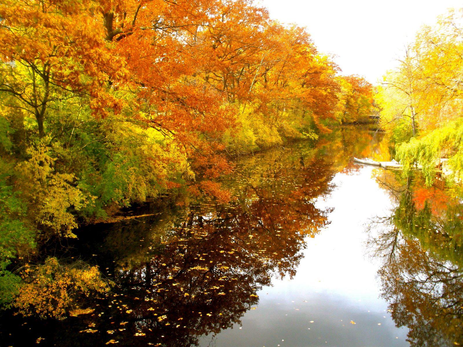 Red Cedar River ~ Fall on the red cedar river michigan state university