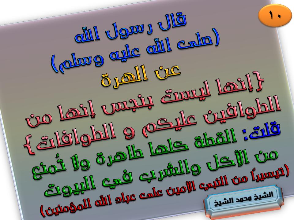 10 الهرة ليست بنجس هي من الطوافين عليكم والطوافات Ioi Bullet Journal Journal