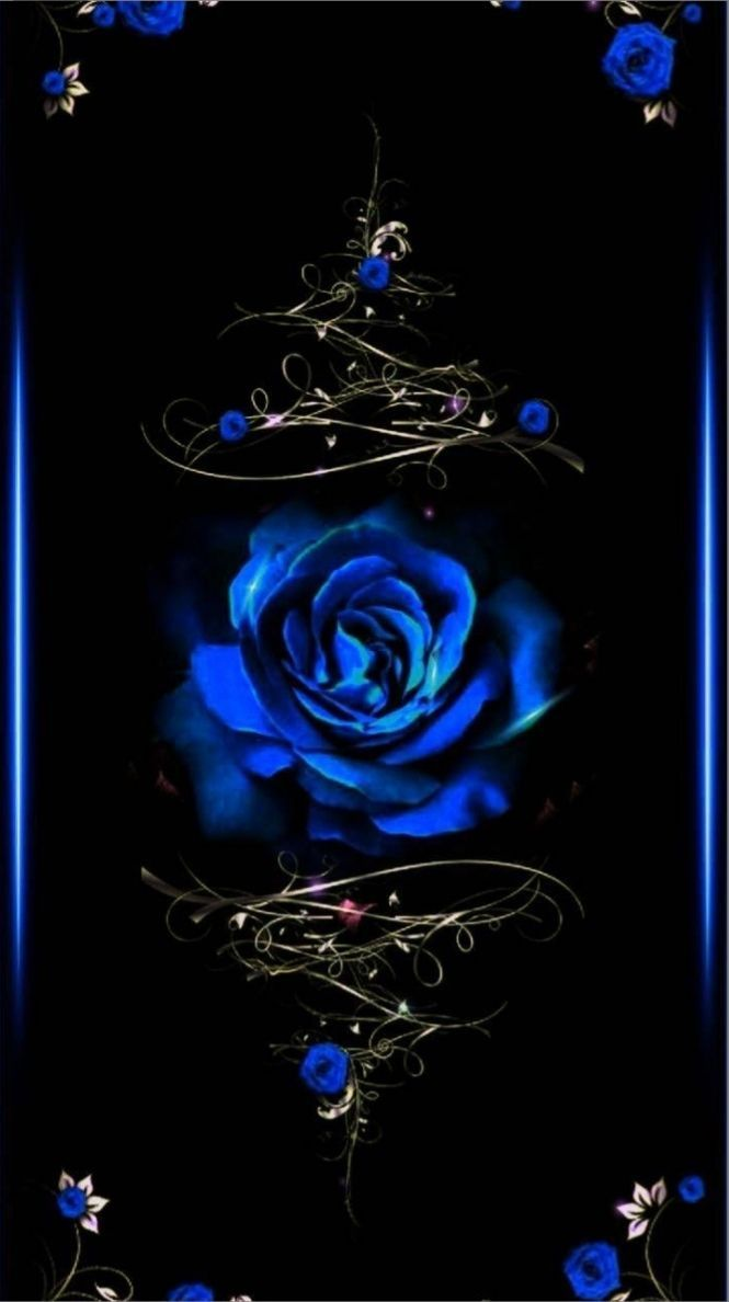 100 poze cu trandafiri