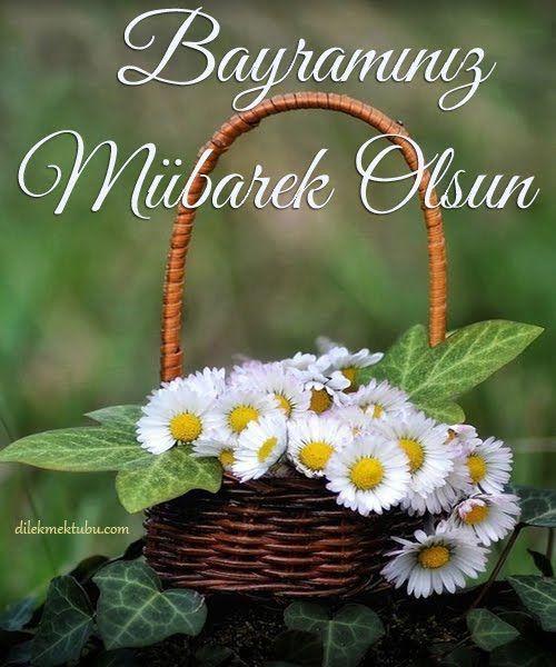 Iyi Bayramlar Resimli Mesajlar Guzel Sozler Special Flowers Beautiful Flowers Pretty Flowers